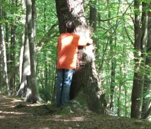 tree_hugger1